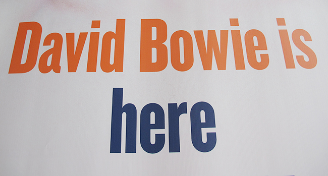 bowie-is-here