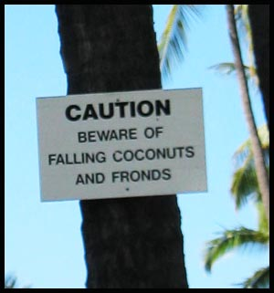beware-of-fronds